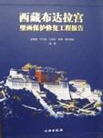 西藏布達拉宮壁畫保護修復工程報告