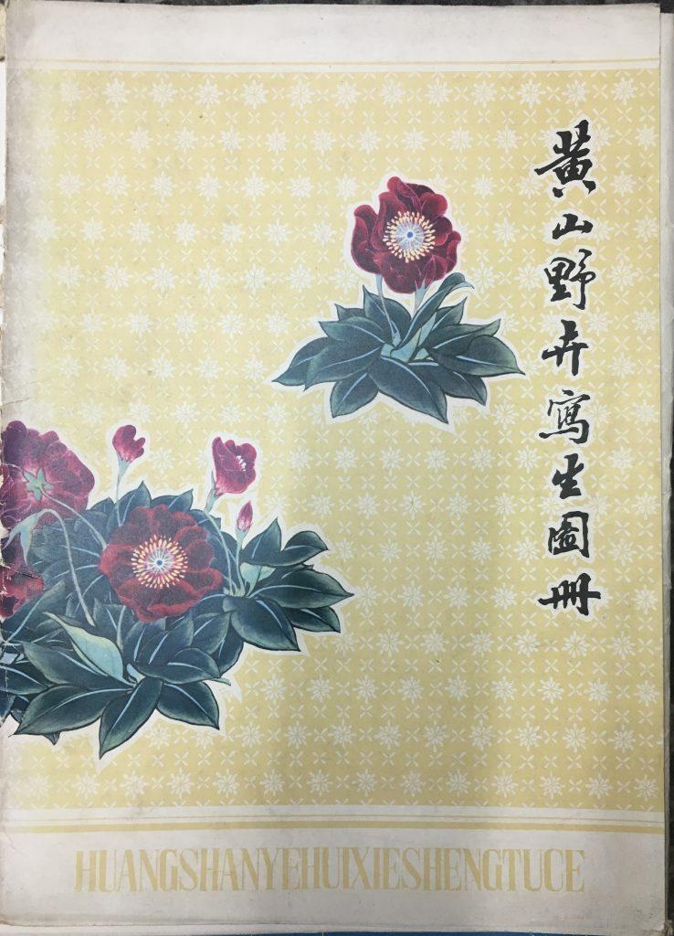 黃山野卉寫生圖冊